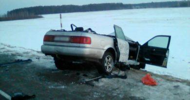 В Пинском районе в ДТП погиб водитель