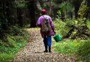 Как в лес собраться, чтобы не потеряться