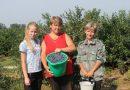 В Пинском районе можно стать фермером за 21,6 рубля